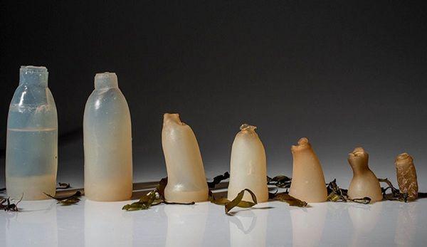 Chai nước có khả năng tự phân hủy do được làm từ tảo